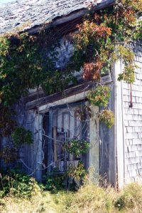 Old house on Mt. Hanley road